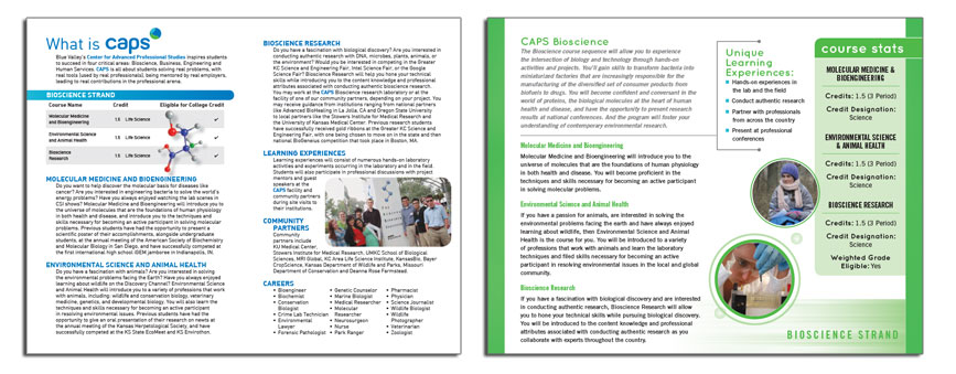 CAPS Brochure Interior, Before and After Redesign